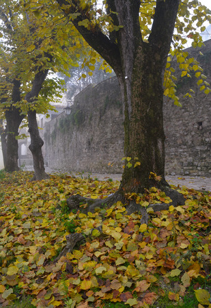 Spoleto (Italy) - A misty fall day in the charming medieval village in Umbria region. The soft focus depends on dense fog, which, however, creates an evocative atmosphere with Sun rays Stock Photo