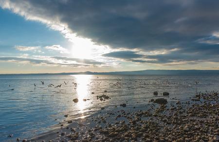Bolsena lake (Italy) - The lake front and the port of Bolsena medieval town, at sunset