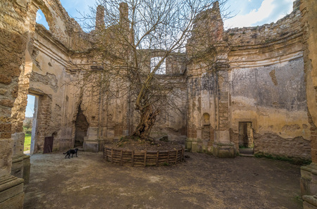 Monterano (Italy) - A ghost medieval town in the country of Lazio region, located in the province of Rome, perched on the summit plateau of the hill tuff.