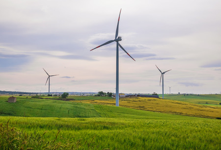 Puglia (Italy) - Wind farm with wind turbines and expanses of wheat