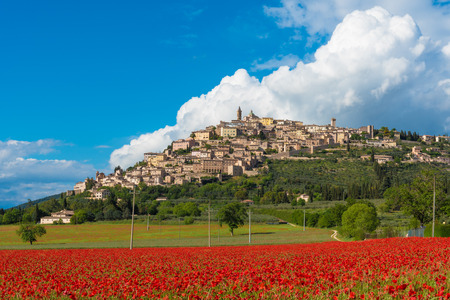 Trevi (Italy) - The awesome medieval town in Umbria region, central Italy, during the spring and flowering of poppies. Stok Fotoğraf