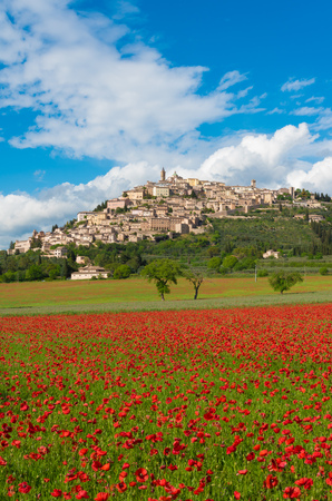 Trevi (Italy) - The awesome medieval town in Umbria region, central Italy, during the spring and flowering of poppies. Imagens