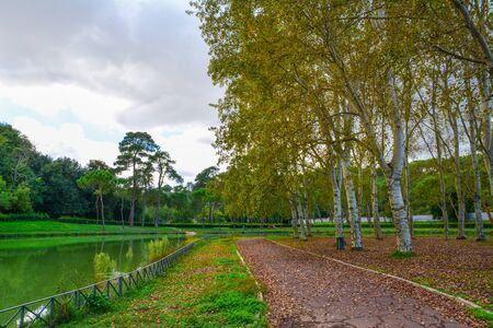 Rome (Italy) - The autumn in Villa Ada, the biggest public park in Rome with lake and forest