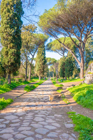 Rome (Italy) - A view of the archeological ruins in the Appian Way of Roma, the most important Roman road of the ancient empire.