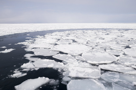 parting the sea: traces in  ice sheet