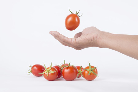 bounce: tomato bounce on hand