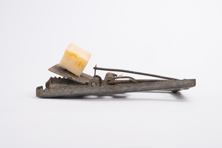mousetrap: mousetrap baited with cheese isolated on white background Stock Photo