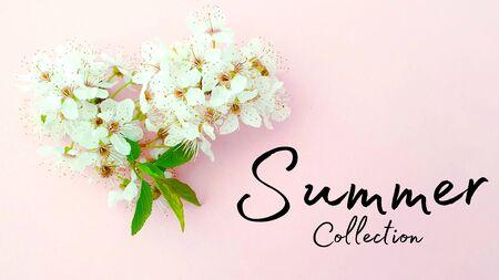 Summer collection fashion season style Imagens