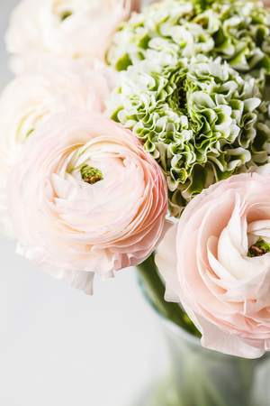Bouquet of beautiful fresh pink ranunculus flowers, white background.