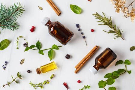 Ingredients for essential oil. Different herbs and bottles of essential oil, white background. Healthy cosmetics concept.