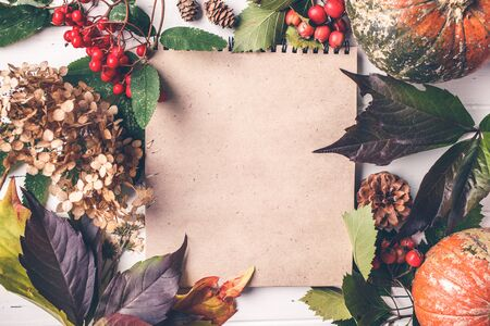 Autumn composition. Autumn leaves, berries and pumpkin on a white background, top view, copy space.