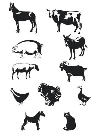 animales de granja Ilustración de vector
