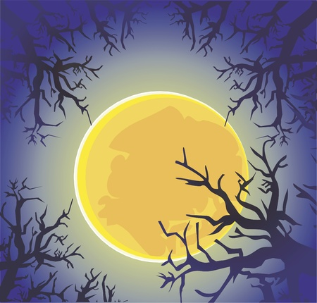 grove: moon night forest