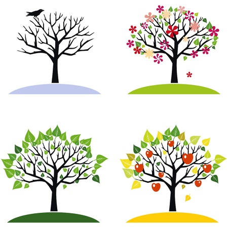 apple isolated: Four seasons trees Illustration