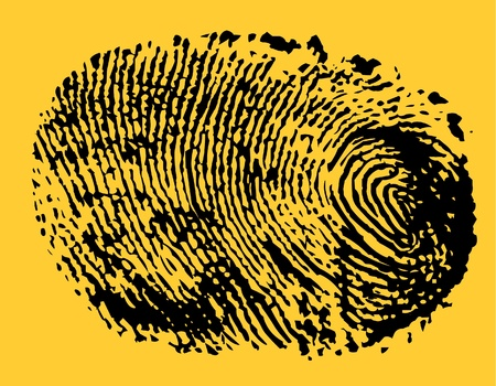 Fingerprint Stock Vector - 11002780