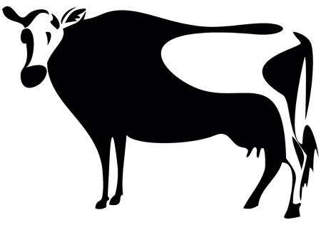 cow silhouette: Illustration of cow