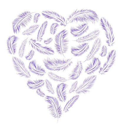 Heart shaped feathers Imagens - 13557183