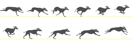 Running greyhound Vettoriali