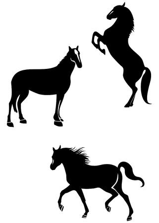 free riding: Set di illustrazione cavalli Vettoriali