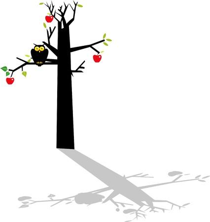 Owl on the apple tree  Stock Vector - 13653009