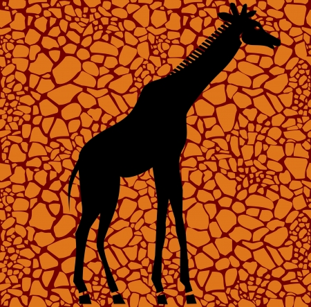 Giraffe Stock Vector - 14469445