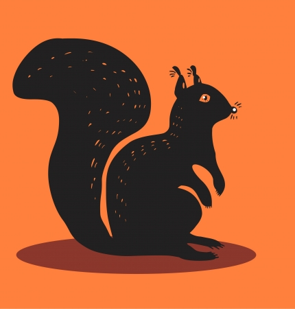 eurasia: Squirrel
