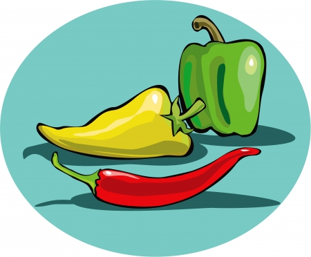Colored Peppers Stock Vector - 16420616