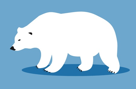 White polar bear  Vector