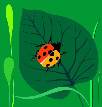 Ladybird  on a green leaf Stock Vector - 17801589