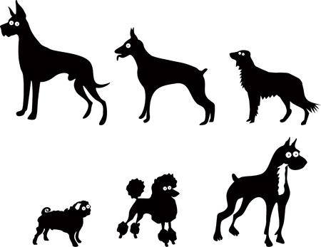 grappige honden: Set van grappige honden