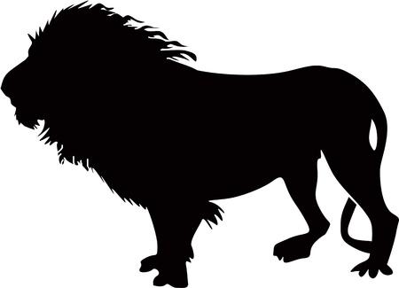 medieval king: Lion Illustration