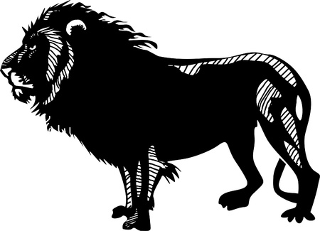 stalking: Lion Illustration