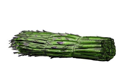 asparagus: Asparagus bunch