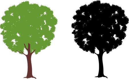 Trees Stock Vector - 19601680