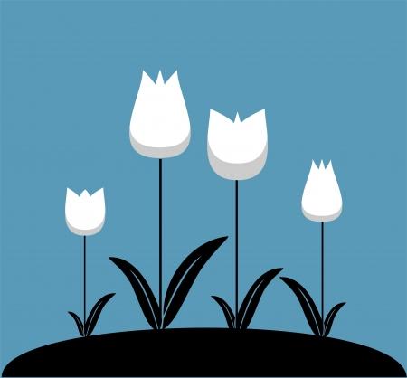 Garden with white tulips Stock Vector - 21006462
