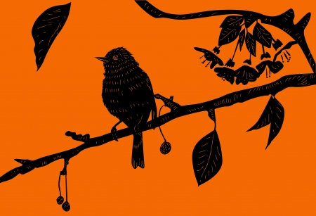 Bird on the branch  Vector