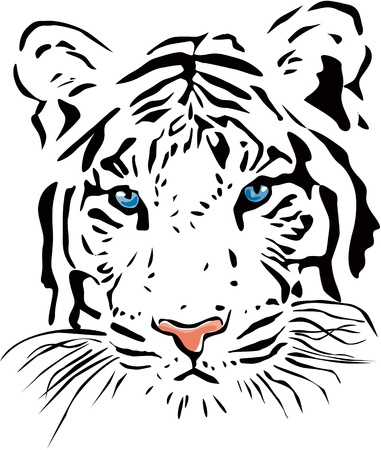 silueta tigre: Tigre blanco Vectores