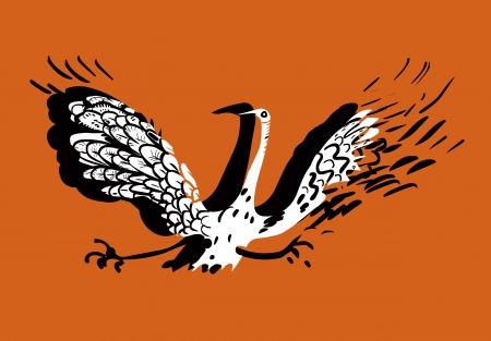 falling feather:  Funny bird  Funny bird  Illustration
