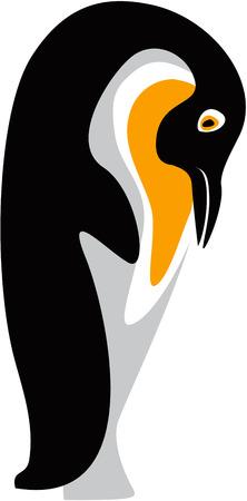 pinguin:  Funny penguin