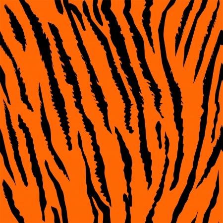 tigre: Seamless tiger fur pattern  Illustration