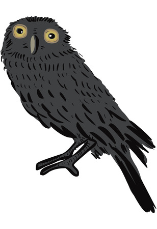 owlet: Mochuelo