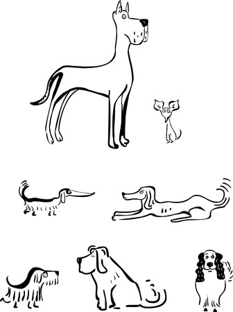 spaniel: Set of funny dogs