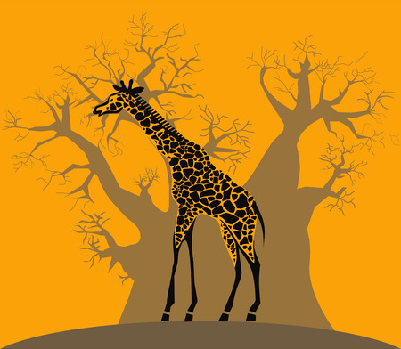 Giraffe and baobab on african savannah Vector