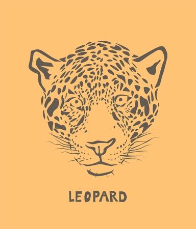 Vector leopard head  Illustration