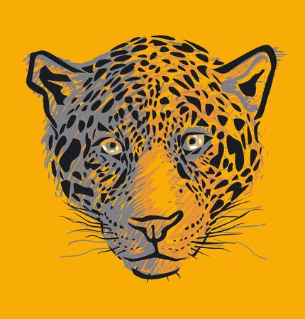 Vector leopard head  Vector