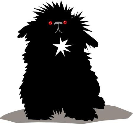 frise: Cute black dog