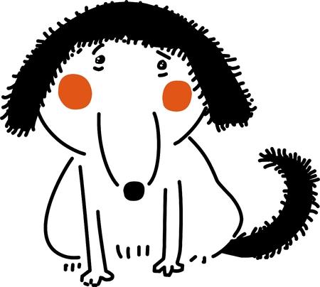 funny: Funny dog