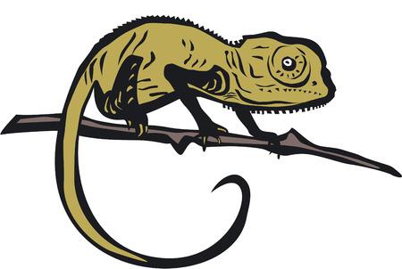 Chameleon vector illustration Illustration