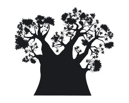 Baobab tree illustration