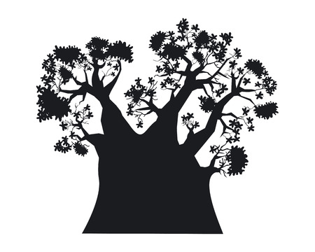 Baobab tree illustration